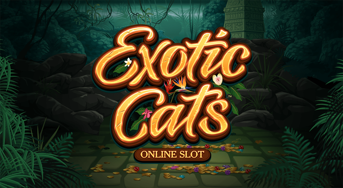 Become king of the jungle with Microgaming's new slot game Exotic Cats